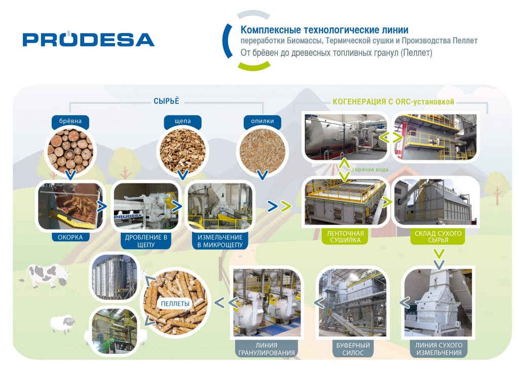imagen-proceso-ruso