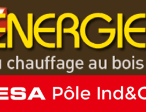 Prodesa at the Bois Energie Fair (15-16th March 2018)